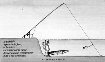 La pêche au vif des carnassiers  brochet, sandre, perche, silure