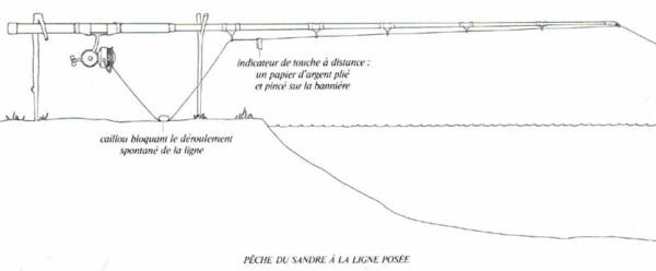 P 234 Che Au Vif